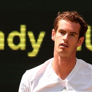 India Knight: Andy Murray? He plays tennis, not celebrity