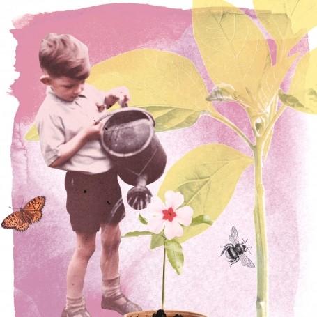 Pip McCormac's guide to growing an edible garden