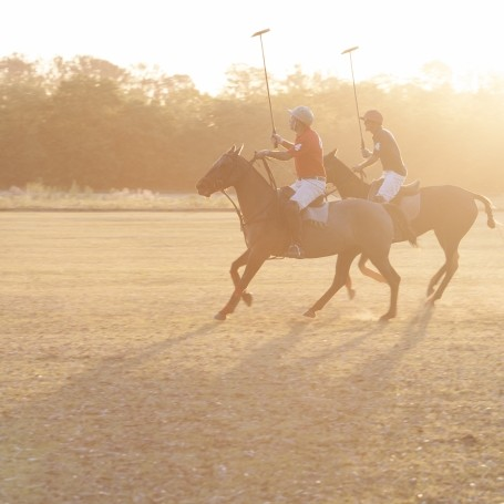 A Beginner's Guide to playing polo
