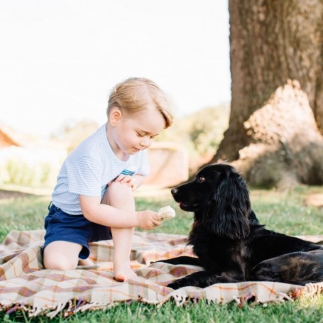 Gorgeous Prince George pictures that will melt your heart