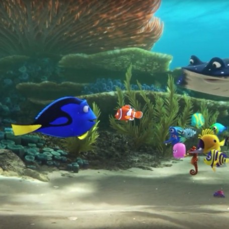 Watch the latest trailer for Finding Dory