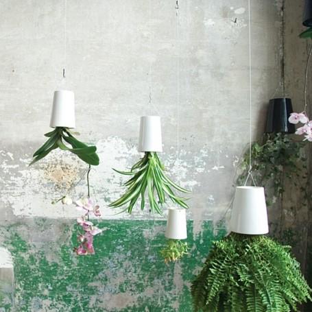 How to grow herbs (stylishly) indoors