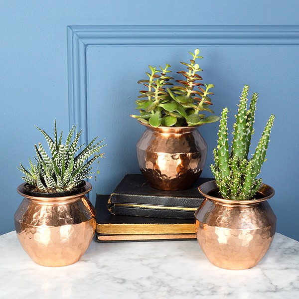 Stylish Planters Every Home Needs Interiors What To