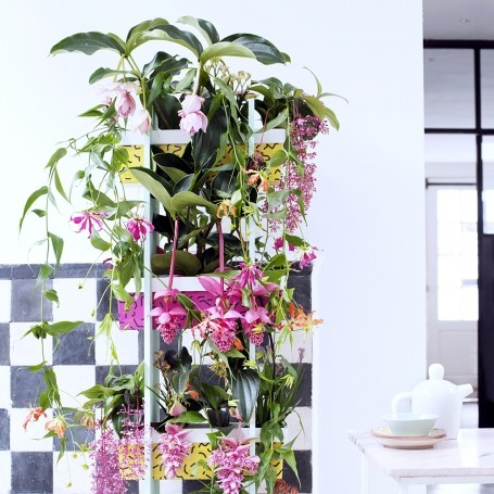 The most stylishly simple ways to decorate with houseplants