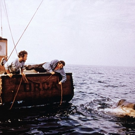 The moments from Jaws we're still watching between our fingers