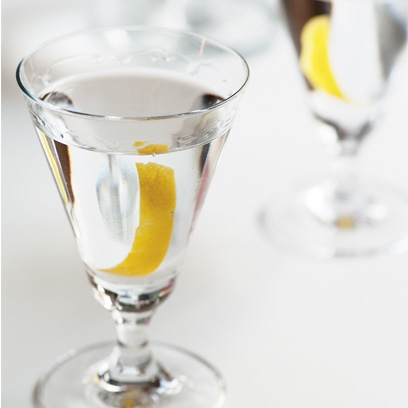Margot henderson s martini easy cocktail recipes red for Easy vodka martini recipes