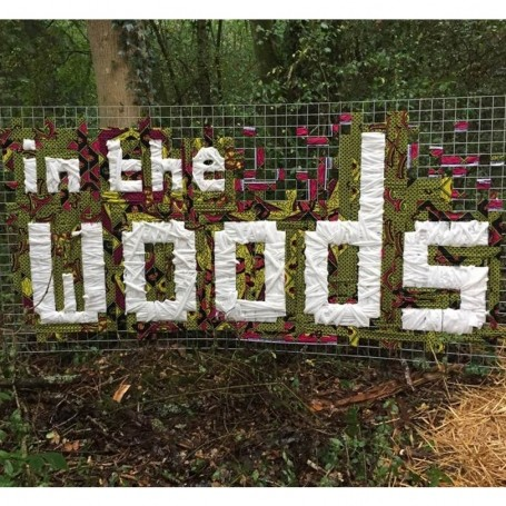 48 hours at In The Woods Festival