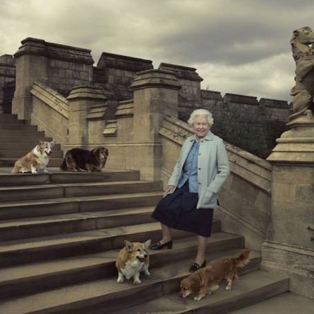 The Queen's corgi died - here's why she's not getting any more