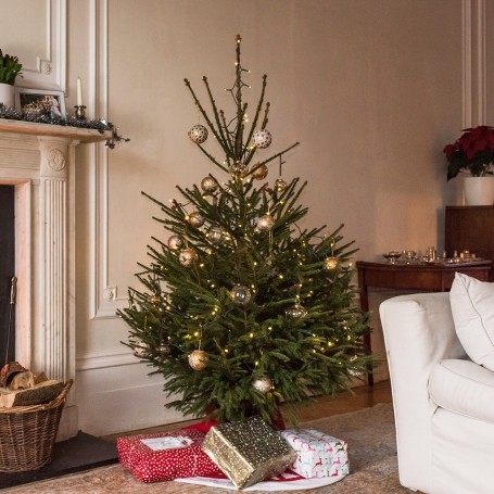You can now have your Christmas tree delivered