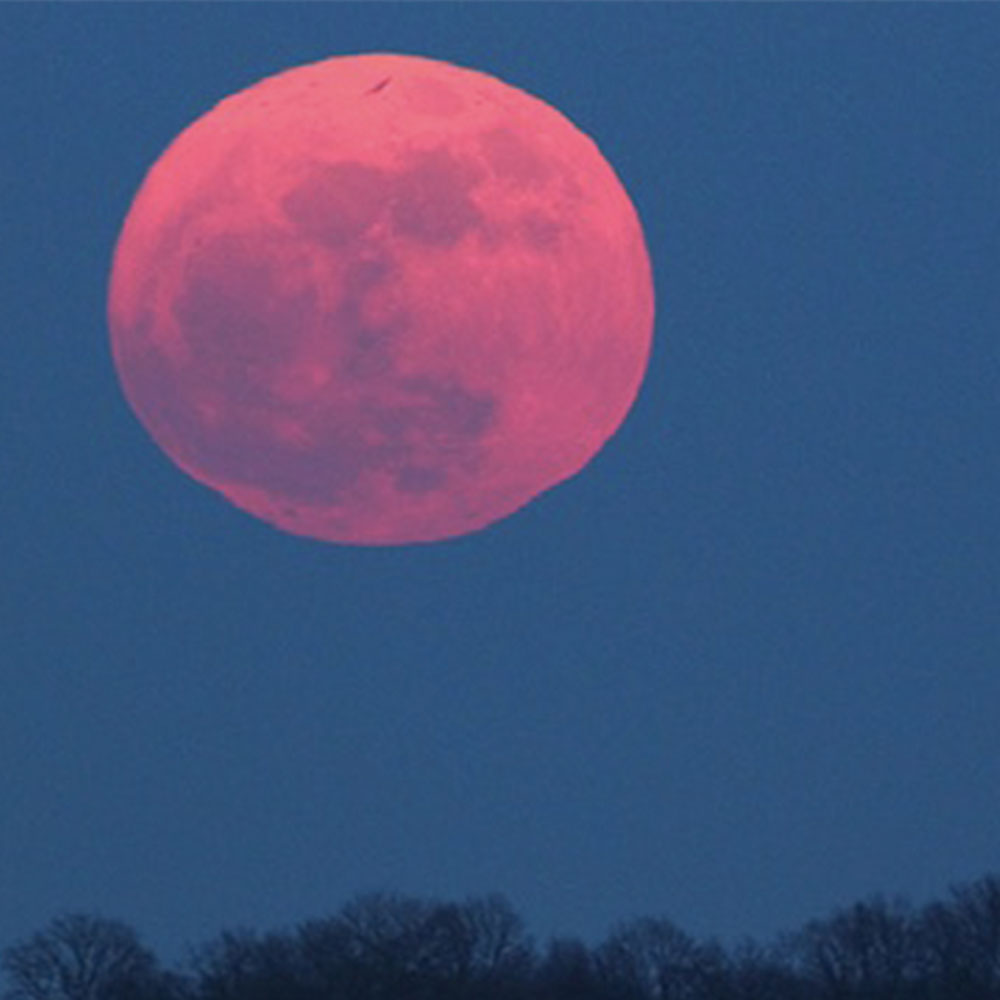 Pink Moon In April 2017 Why The Moon Is Turning Pink