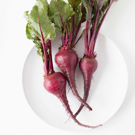 Beetroot could be the secret to a better workout