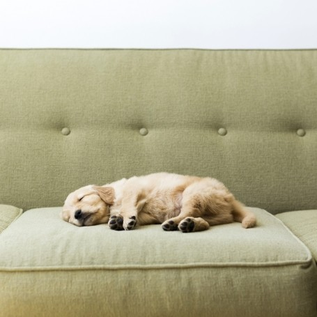 This is the exact amount of sleep you need to be happy, new study claims
