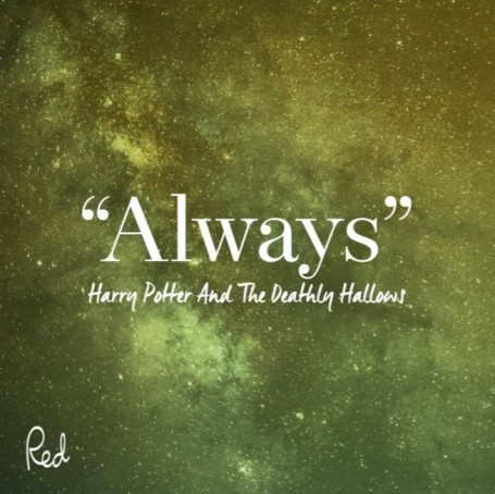 A love letter to Harry Potter