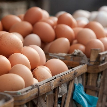 Supermarkets remove products from shelves as UK egg scare grows
