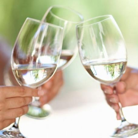 Aldi has launched a low calorie wine