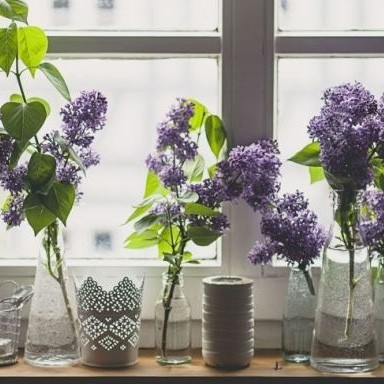 7 ways to make your home smell amazing