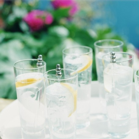 The best tonic waters