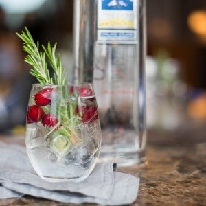 Cranberry and rosemary gin and tonic