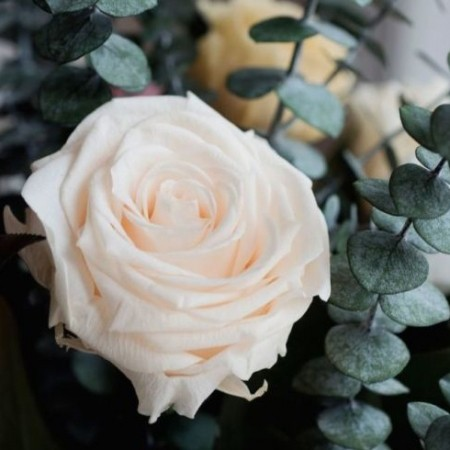 Decorate your home with real flowers that will last an ...