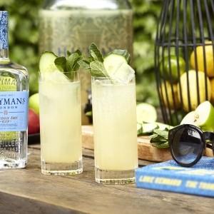 English great garden gin punch