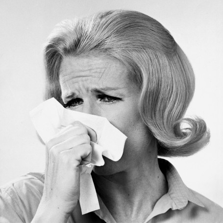 Hay fever remedies that actually work