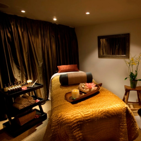 Caribbean body therapy at aveda red online for Aveda elemental nature facial