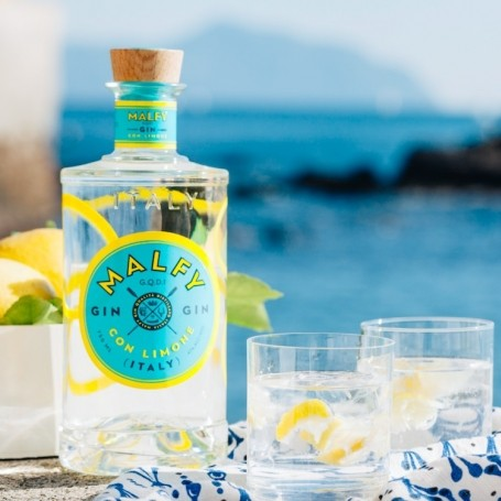 The best gins to drink all summer long