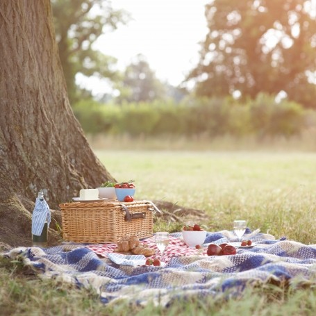 Stylish picnic blankets every occasion needs