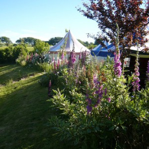 Six of the Best Places for Glamping in Cornwall
