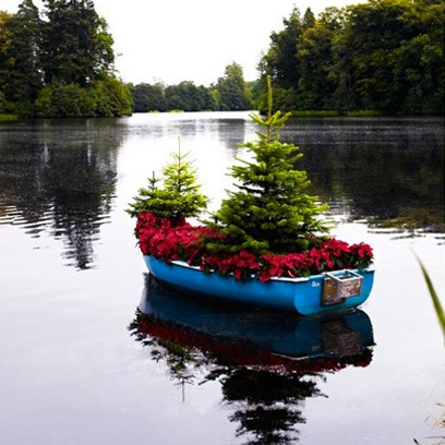 Best Places To Buy Christmas Trees In The Uk Best
